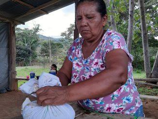 Foto: BIRITECA Agroecológica